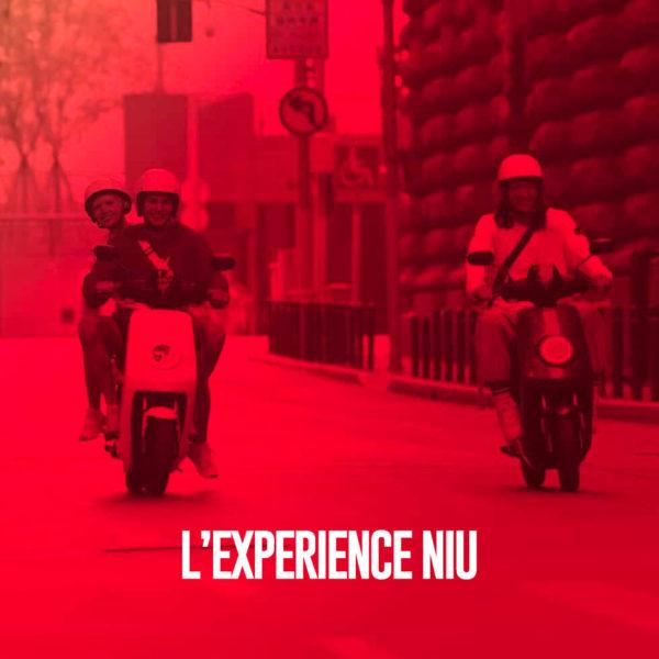 M+-LEXPERIENCE-NIU